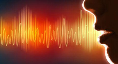 Установка VoiceAttack